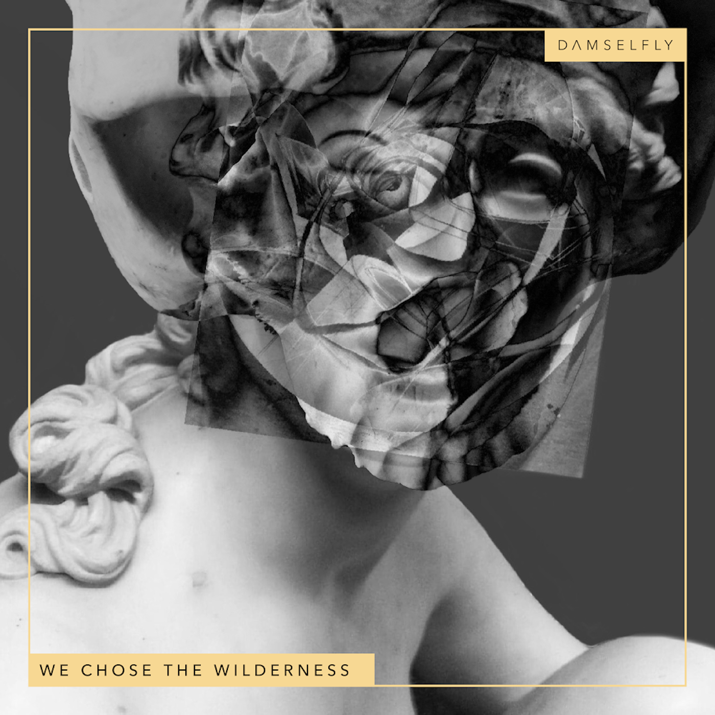 Damselfly - We Chose the Wilderness
